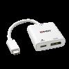 Konverter USB-C (M) - Displayport (F) UHD 4K 3840x2160p 60Hz, 0.18m, lisatoitega