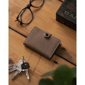 Taskulamp - rahakott Ledlenser Lite Wallet (pruun-hallikas)