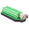 Mini DIsplayport (F) - Terminal Block 22pin