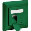 CAT 6a wall plate flush mounting, green, 2x RJ45 s...
