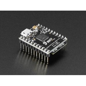 Espruino WiFi - STM32 WiFi mikrokontrolleri moodul