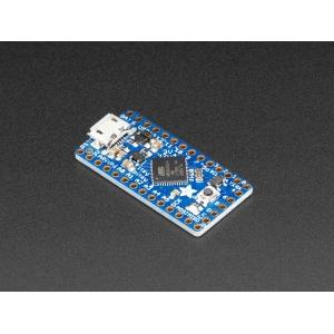 Adafruit Itsy Bitsy 32u4 - 3V 8MHz mikrokontroller